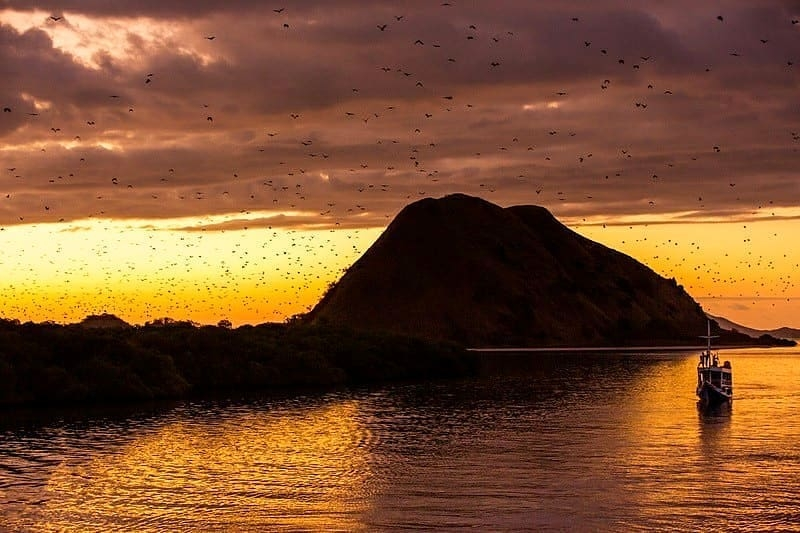 Recommended Labuan Bajo Tour Packages